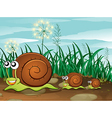 Three snails vector image vector image