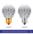 brain and light bulbs vector image