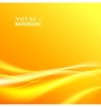 Tender orange light abstract background vector image