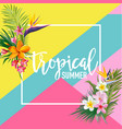 tropical flowers and palms summer graphic vector image