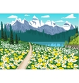 chamomile field leading to a mountain lake vector image