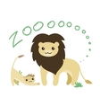 Set of Cute Zoo Animal Kawaii eyes and vector image