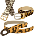 Belt with texture wild animal skins vector image