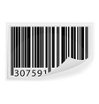 barcode 06 vector image vector image