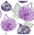 Fig Fruit Hand Draw Sketch Background Pattern vector image