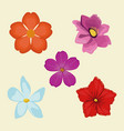 set flowers spring decoration image vector image