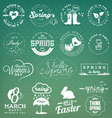 Spring Badges and Typography Elements vector image