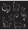 cat sketches vector image