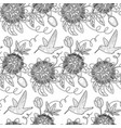 hummingbird and passiflora seamless pattern vector image