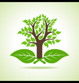 Tree on the leaf vector image vector image