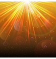 Golden Lights background vector image