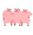 Three pig for fairy tale piglets on white vector image