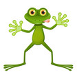 A goggle-eyed frog vector image