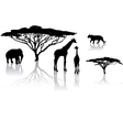 safari zoo vector image