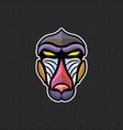 baboon logo design template baboon head icon vector image