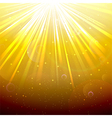 Golden Lights background vector image