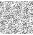 graphic oregano pattern vector image