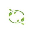 ecology leaves symbol logo vector image