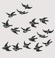 swallow flocks silhouette set vector image