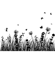 grass silhouettes vector image