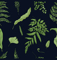 fern green leaves on black background hand drawn vector image