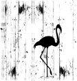 bird dirty vector image