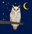 owl sitting at woods under moon vector image