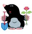 cartoon mole vector image vector image
