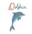 D is for dolphin vector image vector image