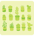 Succulents vector image vector image