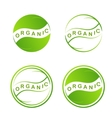 Abstract green leaf logo Plant web Icon Isolated vector image