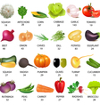 vegetables calories table vector image