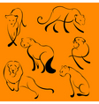 lion sketches vector image