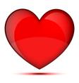 Bright healthy heart vector image vector image