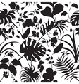 tropic silhouette pattern black vector image