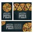 Set posters poster slice pizza Pepperoni Hawaiian vector image vector image