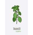 Basil icon Vegetable green leaves vector image