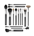Set of Professional Makeup Powder Blush Brushes vector image