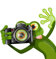 frog with a camera vector image vector image