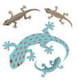 home lizard and gecko lizard in flat vector image