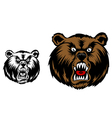 Head of angry bear for mascot design vector image vector image