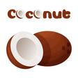 coconut icon cartoon style vector image