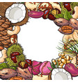 sqaure banner of various nuts with round place for vector image