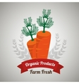 organic products farm fresh vector image