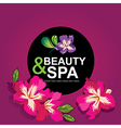 Icon design spa and beauty vector image vector image