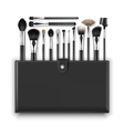 Set of Makeup Powder Blush Brow Brushes and Case vector image