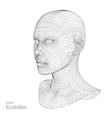 Head of the Person from a 3d Grid Human Wire vector image
