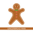 gingerbread man isolated vector image