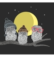 Three owl friends on the tree in the night forest vector image
