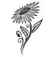 Sunflower summer vector image vector image